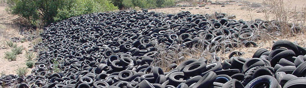 Environmental Clean-up Tire Pile